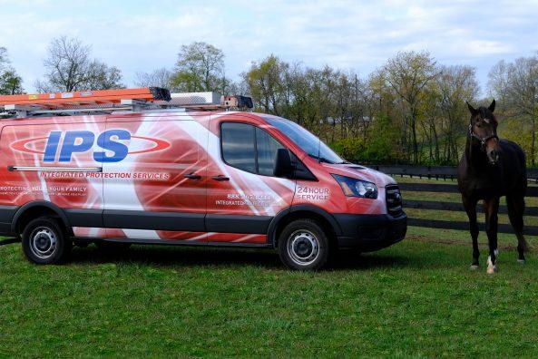 Lex Truck Pic Horse